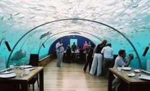 Undersea Restaurant , Ithaa - Maldiven